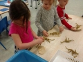 dinosaurs in science friday
